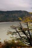 Patagonia sjö arkivbild