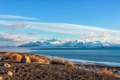 Patagonia wczesny poranek w Argentyna Fotografia Royalty Free