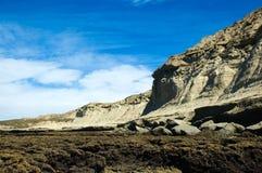 patagoniahalvövaldes Arkivfoto