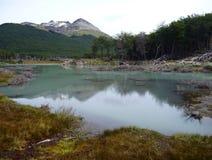 Patagonian τοπίο στη Γη του Πυρός στην Αργεντινή στοκ φωτογραφίες με δικαίωμα ελεύθερης χρήσης