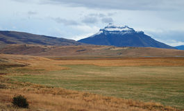 Patagonian fall colors, Chile. Fall colors in Patagonia, north of Puerto Natales Stock Photography