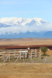 Patagonian hacienda with snowy mountains in backgroung Stock Photos