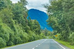 Patagonian Highway, Los Lagos, Chile. Leafy patagonian highway at chilean territory stock photography