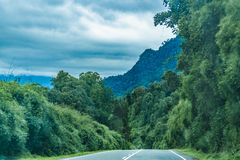 Patagonian Highway, Los Lagos, Chile. Leafy patagonian highway at chilean territory stock photo