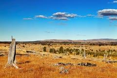 Patagonian landscape royalty free stock image
