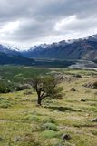 Patagonian Landscapn in the National Park Los Glaciales in Patagoni royalty free stock photo