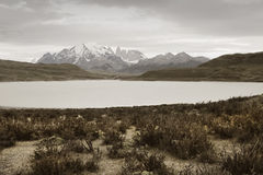 Patagonian landscape. Torres del Paine peaks. Chile Royalty Free Stock Photography