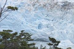 Patagonian Landschaft mit Gletscher Perito Moreno argentinien Stockfotos