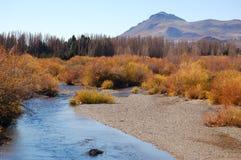 Patagonian landschap royalty-vrije stock foto's