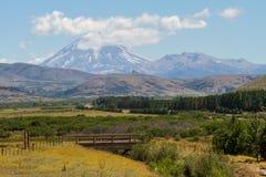 Patagonian landschap stock afbeeldingen