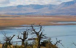 patagonian landskap arkivbilder