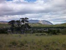 Patagonian mountain panorama in los glaciares park Royalty Free Stock Images