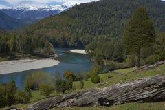 Patagonian rzeki Obraz Stock