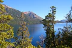 Patagonian sjö bland träd - Bariloche Arkivfoton