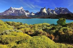 Patagonian summer Stock Images