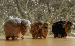 Patagonian woven crochet sheep royalty free stock images