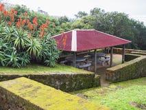 Patamar da alcova com o jardim de assentamento no ponto de vista na vila de Maia, ilha de Miguel do Sao, Açores, Portugal, invern imagens de stock
