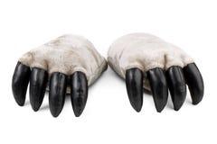 Patas do urso da peluche com garras Fotografia de Stock Royalty Free