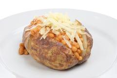 Patata cocida al horno con las habas y el queso Imagenes de archivo