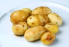 Patata cotta Fotografie Stock