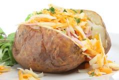 Patata cotta con formaggio & il prosciutto Immagini Stock