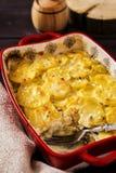Patata del gratén con la seta y el queso verde Fotos de archivo