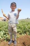 Patata di scavatura del ragazzo giapponese Fotografia Stock Libera da Diritti