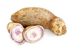 Patata dolce Fleshed porpora immagini stock