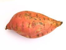 Patata dolce ipomoea batatas Fotografie Stock Libere da Diritti