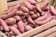 Patata dolce nel canestro di frutta Fotografie Stock Libere da Diritti