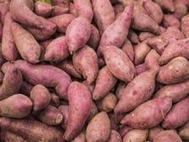 Patata dolce - verdura asiatica Fotografia Stock