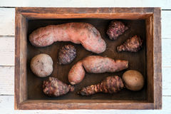 Patata dulce, alcachofa de Jerusalén y patata Foto de archivo