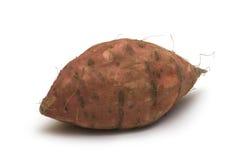 Patata en el fondo blanco Fotos de archivo