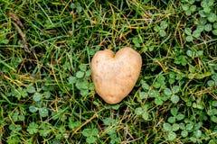 Patata a forma di del cuore sul fondo dell'erba verde Immagine Stock