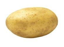 Patata fresca dell'azienda agricola Fotografia Stock Libera da Diritti