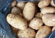 Patata grezza Immagine Stock