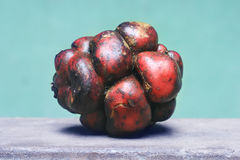 Patata peruviana Fotografie Stock Libere da Diritti