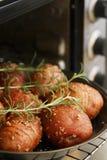 patata rossa Fotografia Stock Libera da Diritti