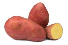 Patata rossa con fondo bianco Fotografia Stock Libera da Diritti