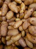 Patata in un mercato di verdure immagini stock