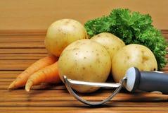 Patata y zanahoria Imagen de archivo libre de regalías