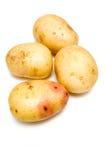 Patatas blancas Imágenes de archivo libres de regalías