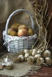 Patatas, cebollas, ajo Foto de archivo