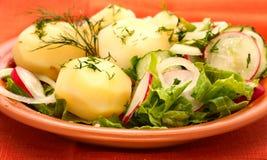 Patatas con la ensalada fresca Imágenes de archivo libres de regalías