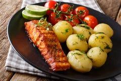 Patatas de color salmón y hervidas asadas picantes, cierre-u fresco de los tomates imagen de archivo libre de regalías