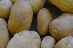 Patatas de cosecha propia en fondo de madera Imagen de archivo libre de regalías