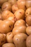 Patatas de la carne asada Imagen de archivo libre de regalías