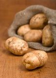 Patatas de la cosecha Fotografía de archivo