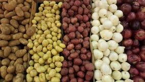 Patatas de la variedad y cebollas de diversos especies y colores Fotografía de archivo