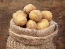 Patatas del campo Fotografía de archivo libre de regalías